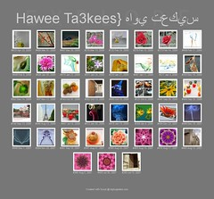 My 43th Photos that are been in eXplore page,, ({ahradwani.com} Hawee Ta3kees- ) Tags: poster ali explore hassan doha qatar    explored explore09  hawee explore2009 exploreapril09 haweeta3kees   ta3kees ahradwanicom ahradwani