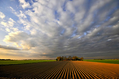 Parallelized (Danil) Tags: sunset holland dutch rural landscape evening nikon daniel tag nederland sigma wideangle groningen dijk polder 1020 dike d300 platteland nohdr dedaniel parallelized