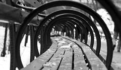 Through the Rabit Hole Exit Central Park (An Nguyen Photography) Tags: delete10 delete9 delete5 delete2 delete6 delete7 save3 delete8 delete3 save7 save8 delete delete4 save save2 save6 save5wesheadseemstohavefailedtotag