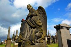Glasgow Necropolis 4