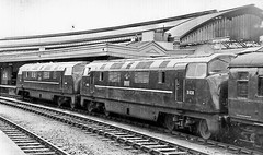 "D838 ""Rapid"" & D849 ""Superb"" at Bristol Temple Meads, 1961 (rugd1022) Tags: bristol temple br superb diesel north class company british locomotive rapid 1961 warship wr 43 hydraulic meads nbl d849 d8xx d838"