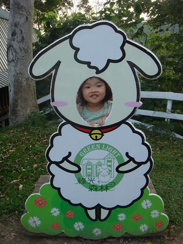 090529綠光森林207