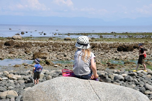 Seal Bay 2009
