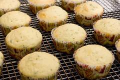 Lavender Cupcakes 2