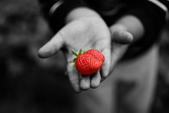 Strawberry (PicMax) Tags: 35mm hands strawberry f18g afsdxnikkor35mmf18g