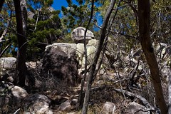 Magnetic Island (C) 2009