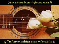 Tu foto es música para mi espíritu / Your picture is music for my spirit