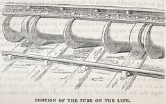 Portion of the tube on the line