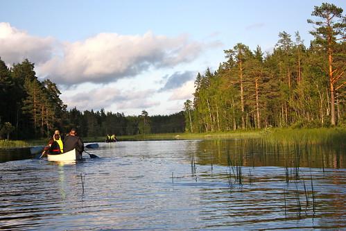 Suecia /Sweden