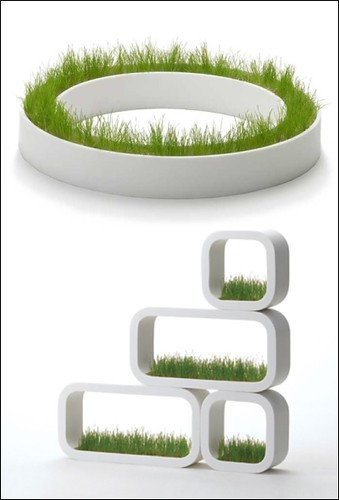 Modern Planters Collection