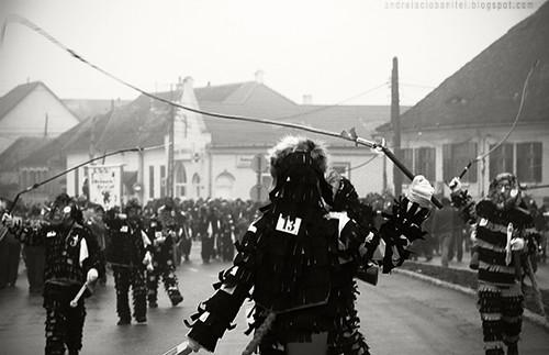 carnavalul lolelor (III)
