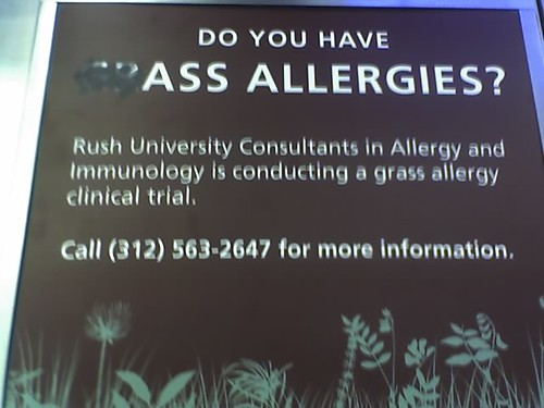 Do You Have Ass Allergies?