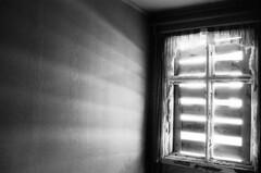 (eliasdahlen) Tags: bw white black minolta elias 400 illford x700 dahlen svinya