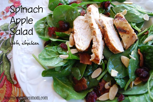 spinach apple salad - Page 265