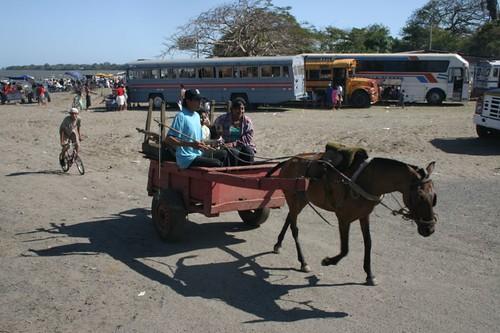 Horses again...