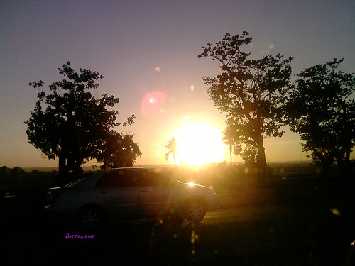 sunset 1 slex