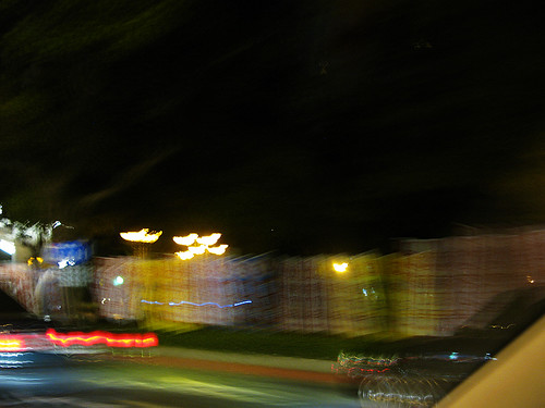 蔣乃辛的選舉旗幟密不通風的把廣大的大安森林公園團團包圍 http://www.flickr.com/photos/anchime/3388532999/