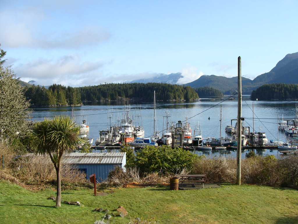 The view from the Tofino Motel