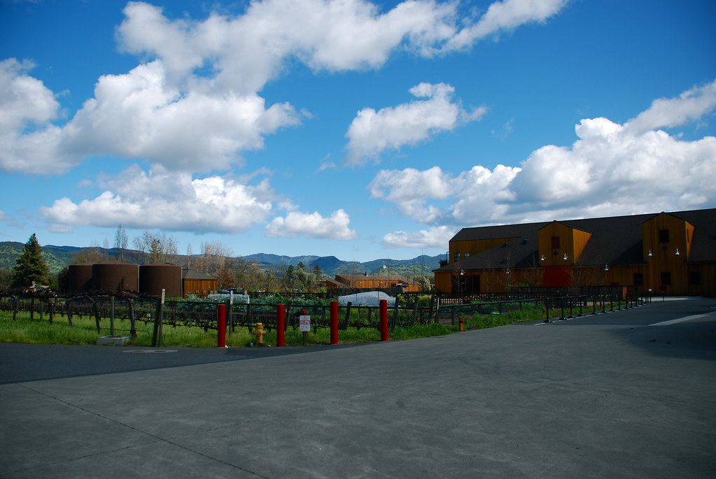 cakebread vineyards