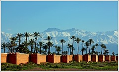 Marrakech Walls (Z Eduardo...) Tags: africa urban snow wall town palm morocco maroc atlas marrakech moutains anawesomeshot aplusphoto