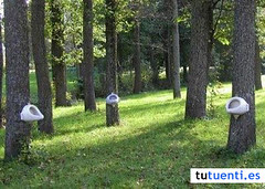 20070927ABB110 (odcos) Tags: cuenta crear tuenti tutuentu