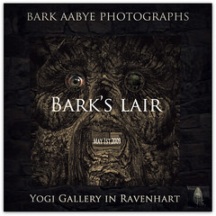 "Exhibition ""Bark's lair"""