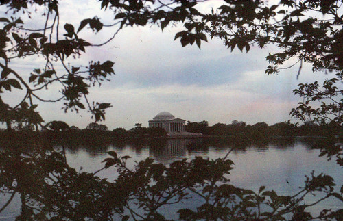 Jefferson Memorial and foliage