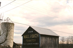 Mail Pouch Tobacco barn (Andrew T's Archives) Tags: trip barn 2000 silo wv westvirginia mailpouch pentaxk1000 us35
