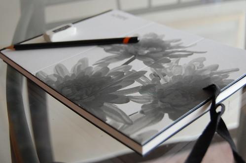 Mi cuaderno de dibujo