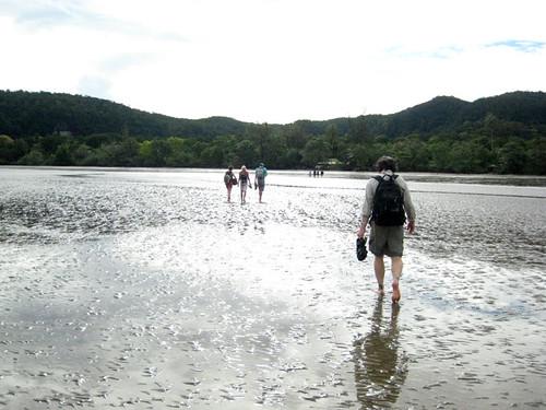 Wading in at Bako