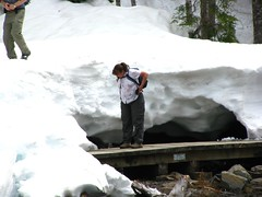 Snow vs hiker vs trail