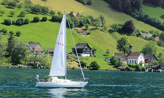 Sailing Lucern (cwgoodroe) Tags: sun mountain lake snow alps green church statue ferry fairytale swimming switzerland boat europe locals suisse swiss sunny location farms movieset luce swissalps lucern medivil beerpasture