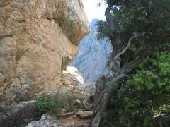 Chemin de ronde du Castellu : versant W