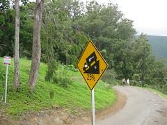 The road down into Waipi'o Valley