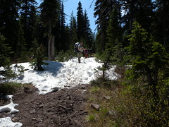 DSCN0583 (MHillyer) Tags: alberta backcountry twinlakes waterton