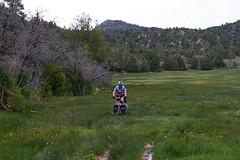 Utah Bicycle Tour Day 4 (Doug Goodenough) Tags: bicycle bike cycle ride gravel dirt pavement utah cliffs route utahcliffsroute adventure cycling southwest 2011 11 may june touring tour doug goodenough douggoodenough jen scott steve will drg53111p drg53111putah drg53111putah4 desert duck valley zion park drg531