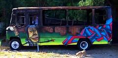 Drems Zade (COLOR IMPOSIBLE CREW) Tags: graffiti micro 2009 zade fros hualqui drems
