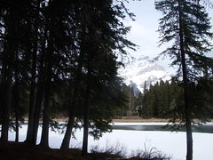 BANNFF 170 (DJ*STEP) Tags: mountain banff bowriver mountainpeak