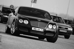Bentley Continental GT (ziggymarlissa.com) Tags: dam continental gt bentley veerse