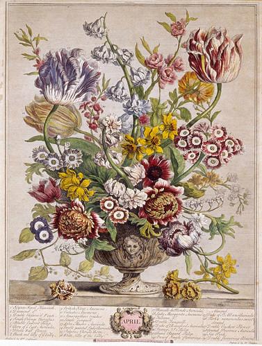 004- Abril-Los doce meses del año en flores