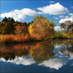 ~ PondScape ~ (ViaMoi) Tags: travel blue autumn sky orange ontario canada reflection fall nature water beautiful clouds canon reflections landscape photography photo pond flickr photographer vibrant ottawa north canadian reflect 2008 farbe naturalist naturesfinest digitalcameraclub supershot ottawacanada 40d mywinners abigfave platinumphoto ultimateshot citrit theunforgettablepictures canon40d naturewatcher viamoi 100commentgroup