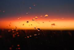 rain on my windscreen