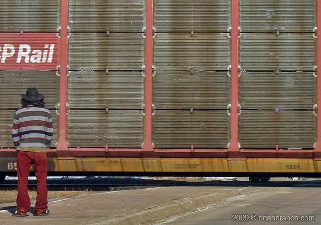 P1000155_stripes