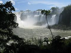 IMG_0499 (killedbysnusnu) Tags: argentina südamerika cataratasdeliguazú