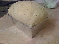 Loaf 8-4: after second rise
