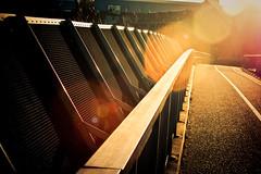 King Oskar's Bridge (Rutger Blom) Tags: road bridge sunlight lund public metal path pad lensflare sverige bro brug contruction asphalt bana weg metaal zonlicht vg asfalt konstruktion fav10 konstruktie solljus yearbook2009 skanelan powmerantusenord kungoskarsbro