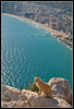 Gato montañero (Salvador P.) Tags: sea mountains beach cat mar cabo mediterraneo playa alicante gato cape montañas calpe ifach peñon