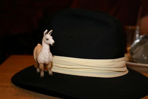 llamas in hats. has Llamas+in+hats