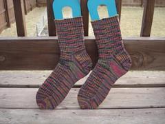 Holidazed socks