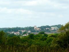 Bélus (40), vue sur St Lon depuis la mairie. (Marie-Hélène Cingal) Tags: france southwest 40 landes sudouest aquitaine paysdorthe bélus yourcountry